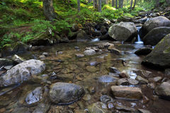 Flowing mountain stream and stones Stock Photos