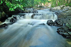 Flowing mountain stream Royalty Free Stock Image