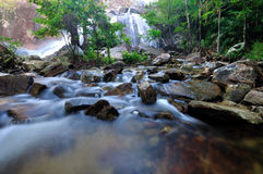 Flowing mountain stream Stock Photo