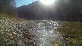 Flowing mountain stream with transparent water and stones on bottom stock footage