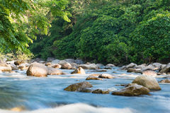 Flowing mountain stream with transparent water and stones. On bottom Royalty Free Stock Image