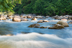 Flowing mountain stream with transparent water and stones. On bottom Stock Photo