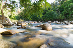 Flowing mountain stream with transparent water and stones. On bottom Stock Photos