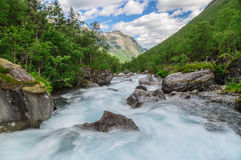 Flowing rapid stream at norwegian mountains Stock Images