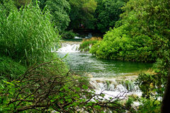 Flowing river. Lush trees frame a flowing river Stock Photography