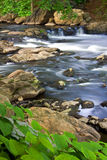 Flowing River. Vertical view of rushing river with small waterfall stock photos