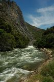 Flowing River. River in Kings Canyon National Park Stock Image