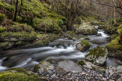 Flowing River in Alva Glen, Scotland Royalty Free Stock Images