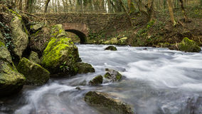 Flowing river in a forest under a brickstone bridge. Stock Photo
