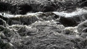 Flowing River. Full frame water flowing quickly in stream or river stock footage