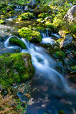 Flowing river Stock Photography