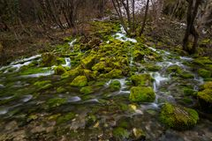 Flowing River and Moss Covered Rocks Stock Image