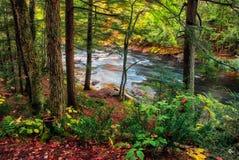 Flowing River - Near Ragged Falls Stock Photos
