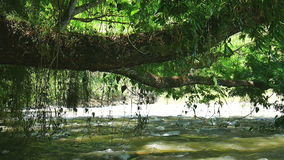 Flowing river scenic. Scenic landscape view of flowing river stock video footage