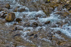 Flowing river showing water texture Royalty Free Stock Image