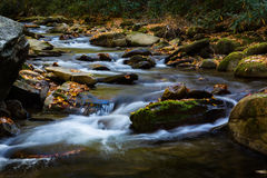 Flowing River Smoky Mountains National Park Tennessee Stock Photos