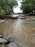 River tree laying across in the forest rocks stock photo