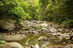 Flowing river Royalty Free Stock Photos