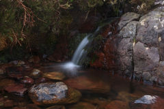 Flowing Rocky Stream. A calm stream, flowing into a small pool of rocks Stock Images