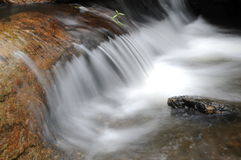 The flowing  spring water Stock Images