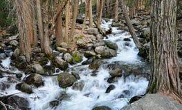 Flowing stream Stock Photos