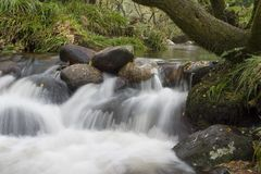 Flowing stream. A flowing stream on Dartmoor Royalty Free Stock Image