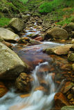 Flowing Stream. A fast flowing stream with blurred water Stock Photo