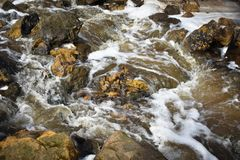 Flowing Stream around River Rocks Background. A flowing stream near a waterfall, pooling and flowing around river rocks, both dark and light at Governor Dodge Royalty Free Stock Photography