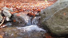 Flowing stream Royalty Free Stock Photography
