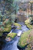 Flowing Stream (fall Season) royalty free stock photography