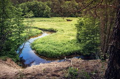 Flowing stream. Gruda between green meadows. Dzukija, Lithuania Stock Photography