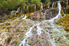 A flowing stream Royalty Free Stock Images