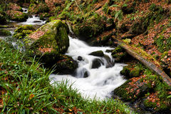Flowing stream at the Kennall Vale gunpowder mills. Flowing stream next to the gunpowder mills at the Kennall Vale gunpowder mills, Cornwall, United Kingdom Stock Images