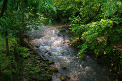 Flowing Stream Stock Photo