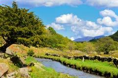 Flowing Stream near Watendlath Royalty Free Stock Photography