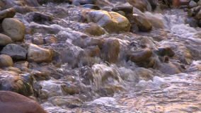 Flowing Stream Over Rocks. The virgin river in zion national park flowing over rocks with evening light reflected stock footage
