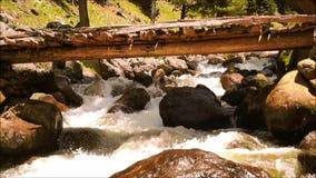 Flowing stream, Pahalgam, Jammu, Kashmir stock footage