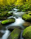 A flowing stream with rocks. A flowing stream with moss covered rocks Royalty Free Stock Photos