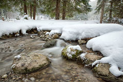 Flowing stream in winter forest Stock Images