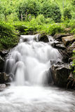Flowing stream in the woods. Flowing stream hidden in the middle of the forest Stock Images