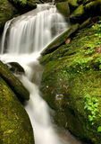 Flowing Water. Fowing water Great Smoky Mountains stock image