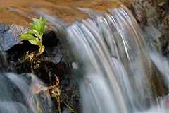 Flowing water Royalty Free Stock Photography