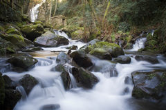 Flowing Water. Flowing river in North of Portugal Royalty Free Stock Image