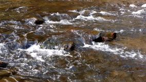 Flowing Water. Flowing Appalachian Creek water in Cades Cove stock video