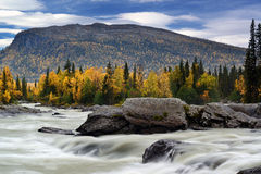 Flowing water. Autumn in northern Sweden on a river Royalty Free Stock Photos