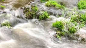 Flowing water close up timelapse stock video