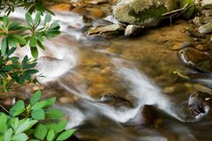 Flowing Water in the Creek. Flowing Water in a Mountain Creek with Rocks Stock Images