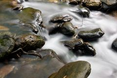 Flowing Water in the Creek Royalty Free Stock Photo