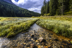 Flowing water. In dolomites, Italy Stock Photo