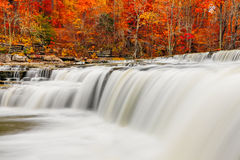 Flowing Water and Fall Leaves Royalty Free Stock Images